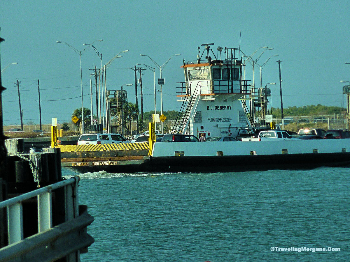 Dolphin Boat Tours Corpus Christi Tx